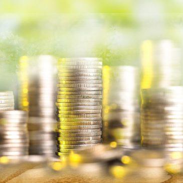 Inclusión de criterios sostenibles en la toma de decisiones de inversión. Reporting y Transparencia